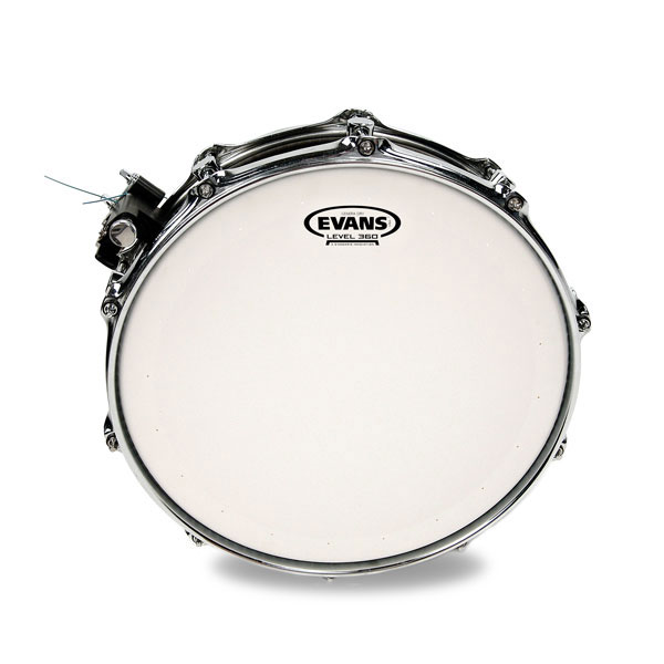 Evans B14DRY 14 in. Genera Dry Snare/Tom/Timbale Head - Bananas at Large - 2