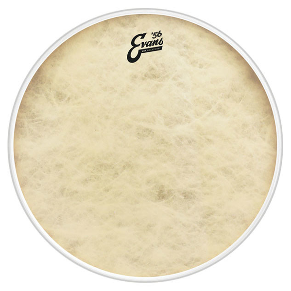 Evans BD20GB4CT 20 in. EQ4 Calftone Bass Drum Head - Bananas at Large - 1