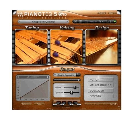 PIANOTEQ Xylophone Add-On [Download] - Bananas at Large