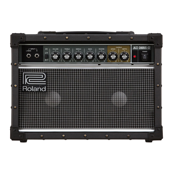 Roland JC-22 Jazz Chrorus 30-Watt Guitar Amp - Bananas at Large - 1