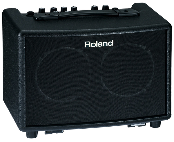 Roland AC-33 Battery-Powered Acoustic Chorus Amp Black - Bananas at Large - 1