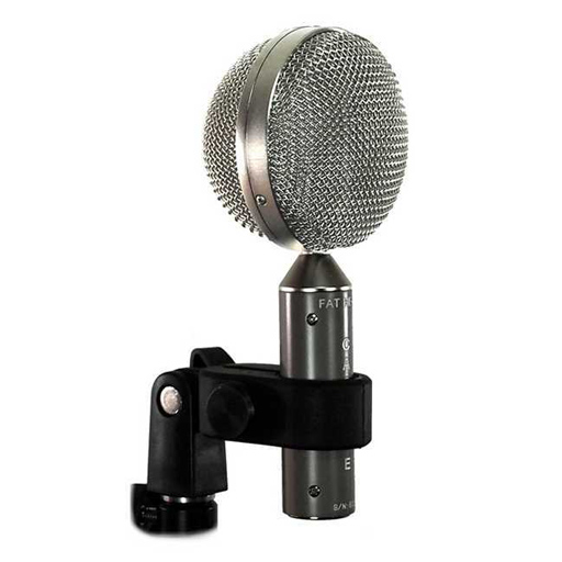 Cascade Fat Head BE Short Ribbon Microphone - Bananas At Large®