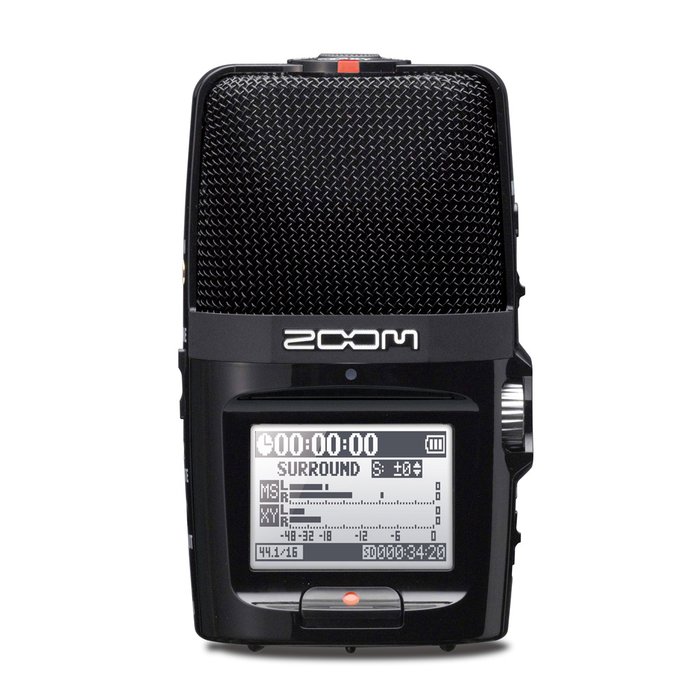 Zoom H2n Handy Recorder - Bananas at Large - 1