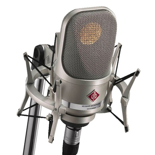 Neumann TLM 107 Multi Pattern Condenser Microphone - Bananas at Large - 1