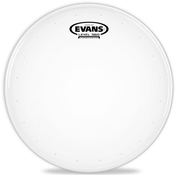 Evans B14DRY 14 in. Genera Dry Snare/Tom/Timbale Head - Bananas at Large - 1