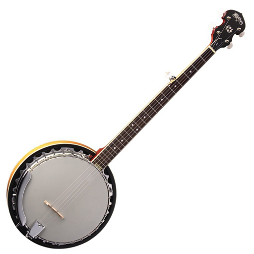 Washburn B9 Banjo - Bananas at Large