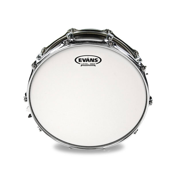 Evans B13G2 13 in. G2 Coated Snare/Tom/Timbale Head - Bananas at Large - 2