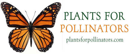 Plants For Pollinators