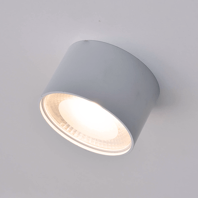 Surface Mounted White LED Downlight | Lighting Collective