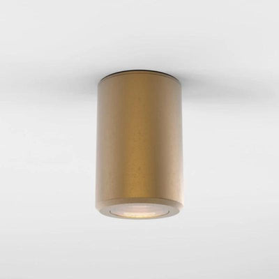 One Way Cylinder Surface Ceiling Mount - Lighting Collective