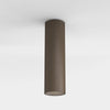 Cylindrical Surface Ceiling Mount | Assorted Finish bronze