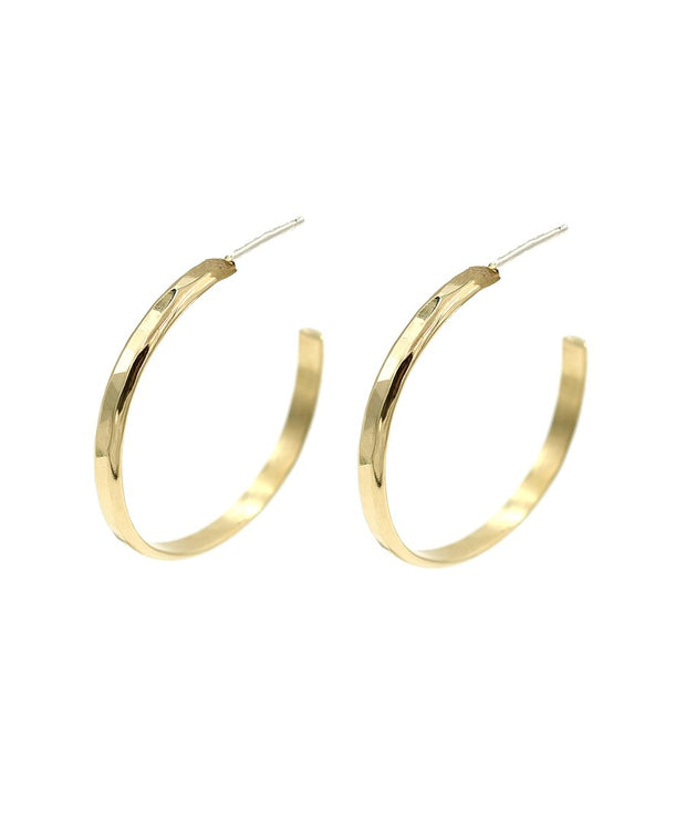 Paradigm Design Hammered Hoops