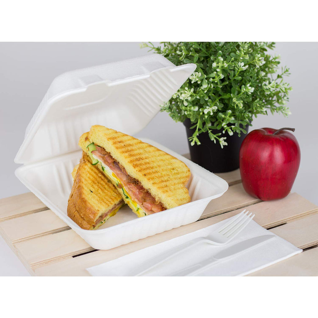 Bagasse takeaway boxes for sandwiches and burgers