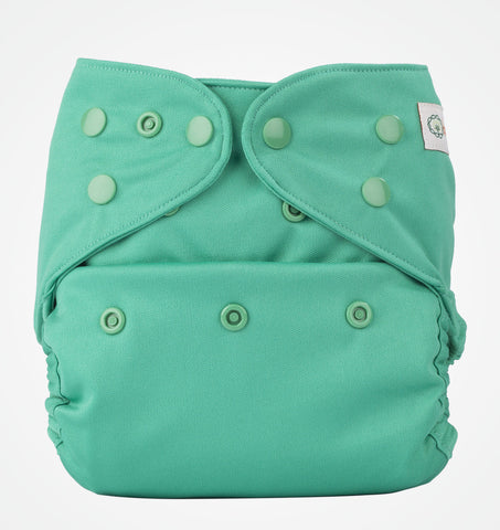 Bumberry Cloth Diaper Cover (Blue Green) + One Natural Bamboo Cotton Insert
