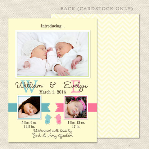twin bird birth announcement