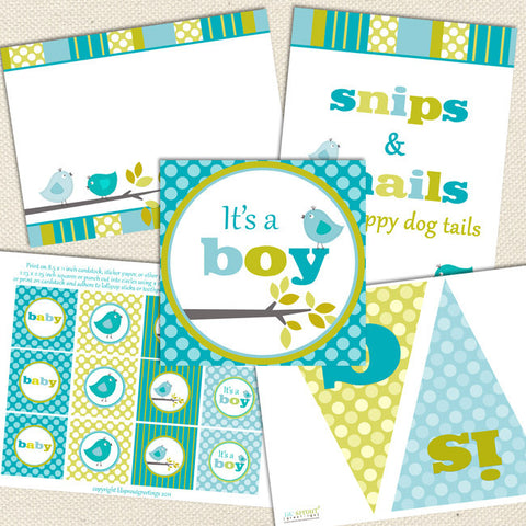 bird boy printable baby shower decorations aqua green