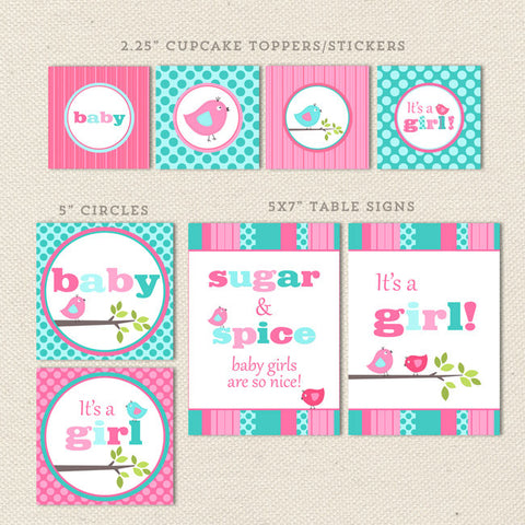 printable baby shower decorations aqua pink bird detail 1