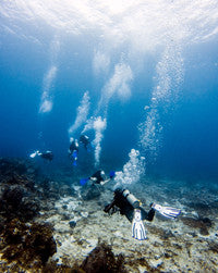 Scuba Diving Wallpaper