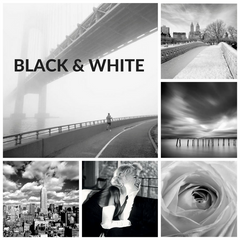 Black and White Collection