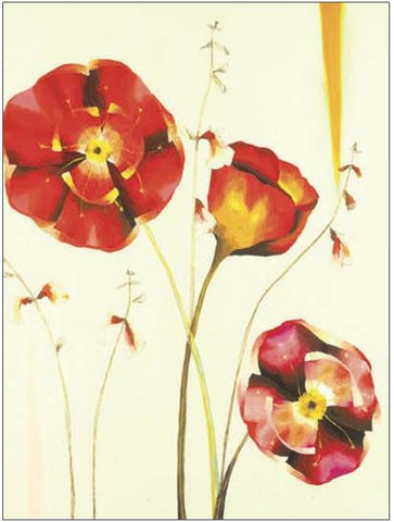 Poppies - Custom Framing, Art Prints, Framed Pictures, Ready Made Frames Artists Materials & more - Art Prints - Julia Ogden