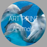 Art Print Collection - Animals
