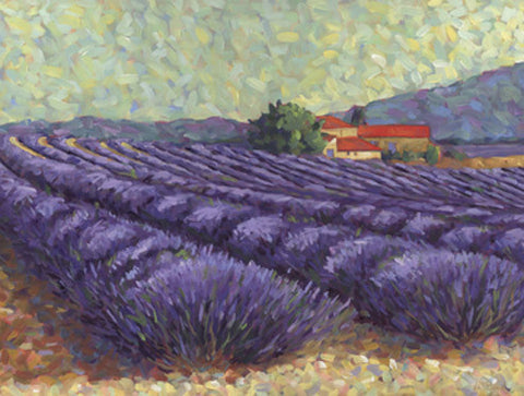 Lavender Fields II Art Print Wallart Picture - Custom Framing, Art Prints, Framed Pictures, Ready Made Frames Artists Materials & more - Art Prints - art@home