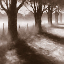 Path By Field - Art Print
