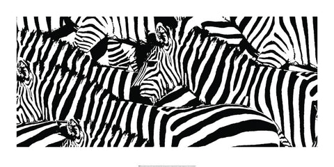 Zebra 50x100cm Art Print Wallart Picture - Custom Framing, Art Prints, Framed Pictures, Ready Made Frames Artists Materials & more - Art Prints - art@home