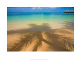 Bavaro Beach - 60x80cm Art Print Wallart Picture - Custom Framing, Art Prints, Framed Pictures, Ready Made Frames Artists Materials & more - Art Prints - art@home