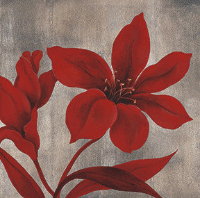 Crimson Bloom I - Custom Framing, Art Prints, Framed Pictures, Ready Made Frames Artists Materials & more - Art Prints - art@home