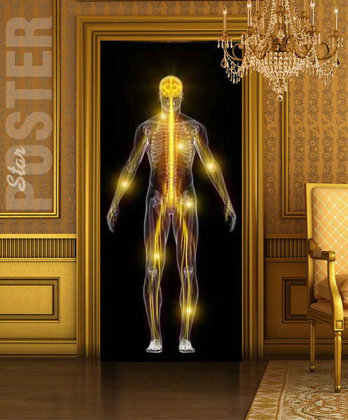 "Door STICKER skeleton medical spectre ghost phantom apparition spook mural decole film self-adhesive poster 30""x79""(77x200 cm) - Pulaton stickers and posters  - 2"