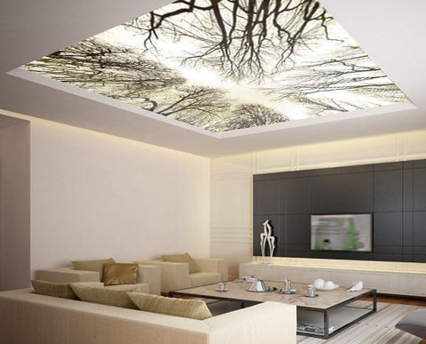 Ceiling STICKER MURAL sky trees forest airly air decole poster - Pulaton stickers and posters  - 1