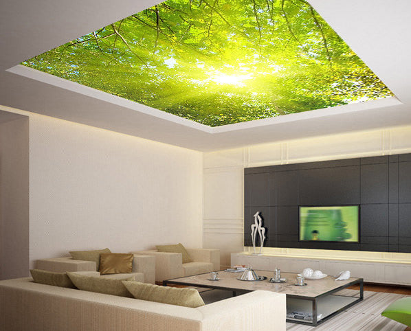 Ceiling STICKER MURAL leaves trees spring forest airly air decole poster - Pulaton stickers and posters  - 1
