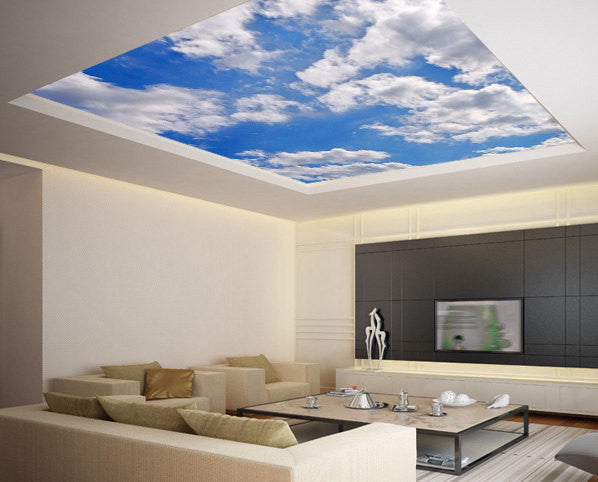 Ceiling STICKER MURAL sky clouds cupola dome airly air decole poster - Pulaton stickers and posters