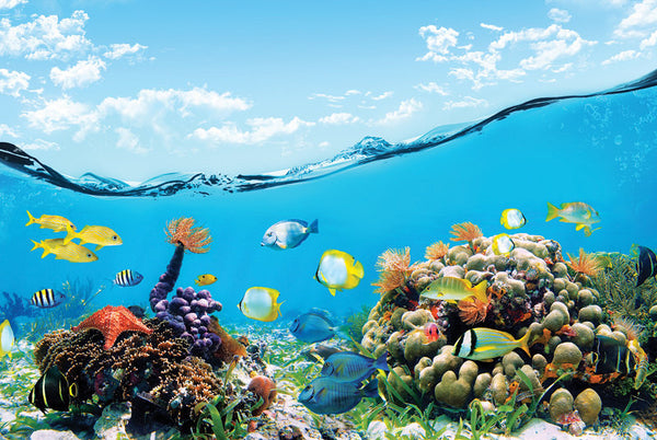 Wall STICKER MURAL ocean sea underwater decole film poster - Pulaton stickers and posters  - 2