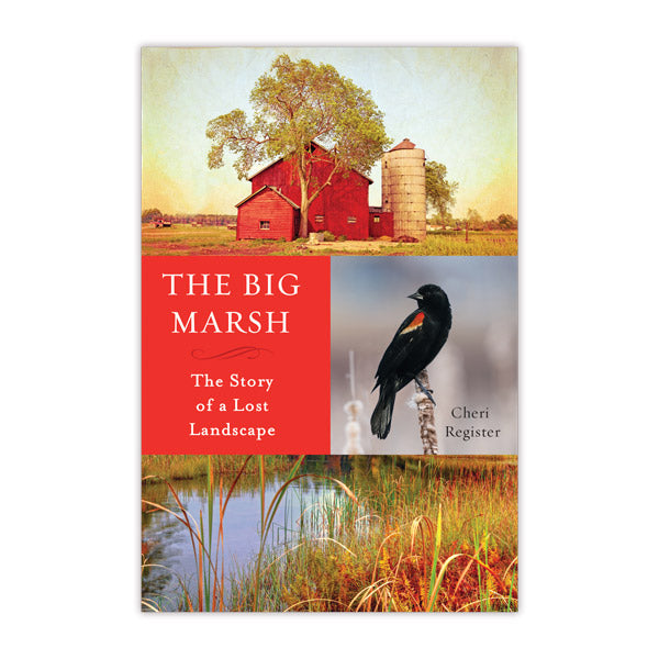 Big Marsh: The Story of a Lost Landscape