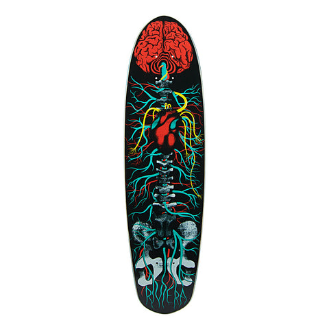 "Riviera Anatomy of a Skateboard Deck - 8""x30"""