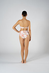 FESTA SEASHELL HIGH BRIEF