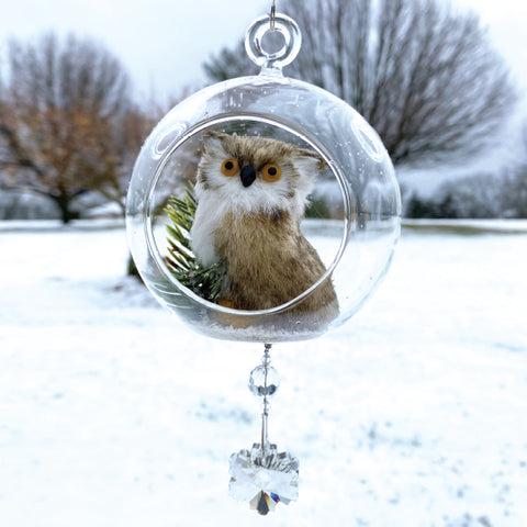 Terrarium: Brown Owl in Glass with Magnetic Snowflake Crystal 3