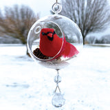 "Terrarium:  Red Cardinal in Glass with Magnetic Crystal 3"" x 7"""