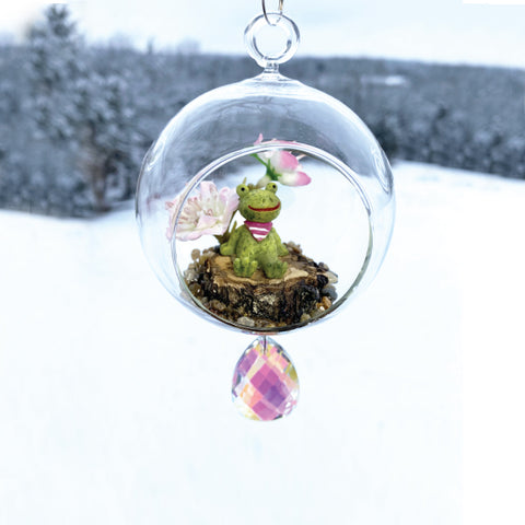 Terrarium: Frog River in Glass with Magnetic Crystal 3