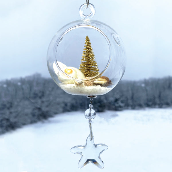 "Terrarium: Shells with Gold Tree in Glass with Magnetic Crystal 3""x7"""
