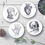 Vintage Coaster Set - Needs & Wishes Art