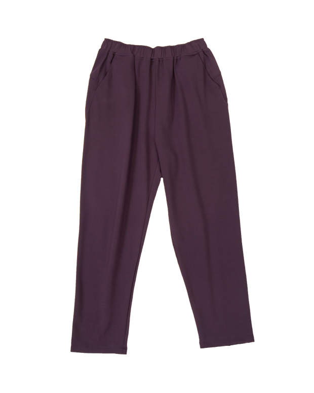 THE CORE STRETCH JOGGER IN EGGPLANT