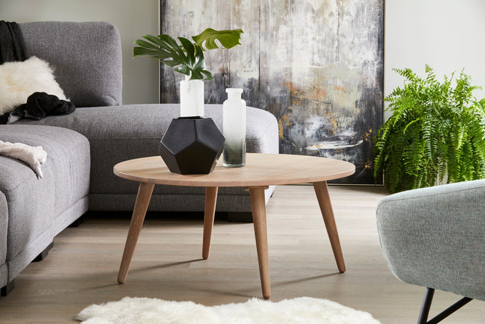 Moe's Home Collection Ariano Coffee Table - BC-1045-18 - Moe's Home Collection - Coffee Tables - Minimal And Modern - 1