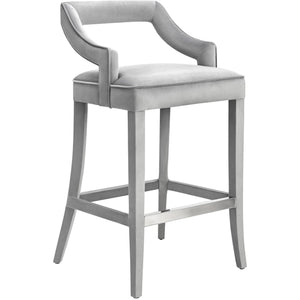 TOV Furniture Modern Tiffany Grey Velvet Bar Stool - TOV-BS19-Minimal & Modern