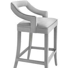 TOV Furniture Modern Tiffany Grey Velvet Counter Stool - TOV-BS20-Minimal & Modern