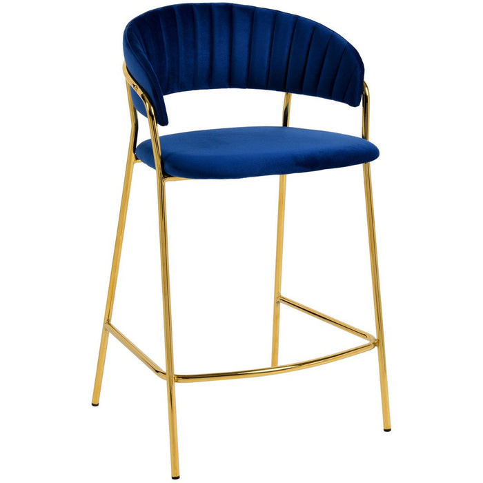 TOV Furniture Modern Padma Navy Velvet Counter Stool - Set of 2 TOV-D4315