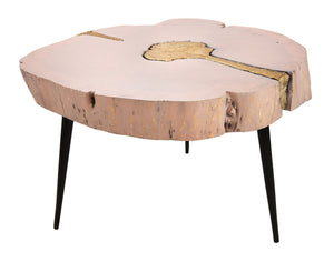 TOV Furniture Modern Timber Pink and Brass Coffee Table - TOV-OC18168