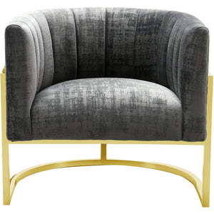 TOV Furniture Modern Magnolia Grey Chair with Gold Base TOV-S6151-Minimal & Modern